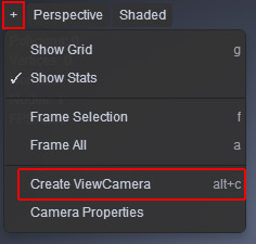 Camera Creation from View Port
