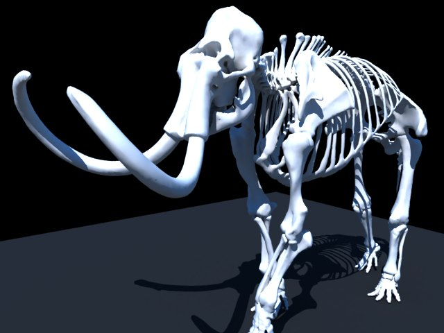 'Woolly Mammoth Skeleton' by lisssss - 3D Model