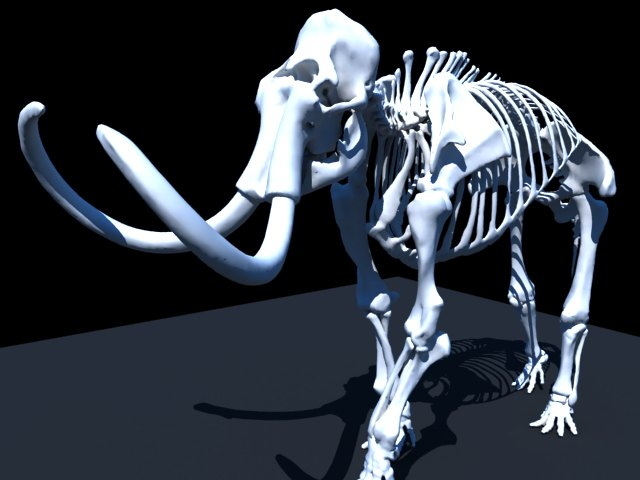 'Woolly Mammoth Skeleton' by enzolima - 3D Model
