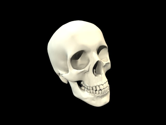 'Skull' by Voltna - 3D Model